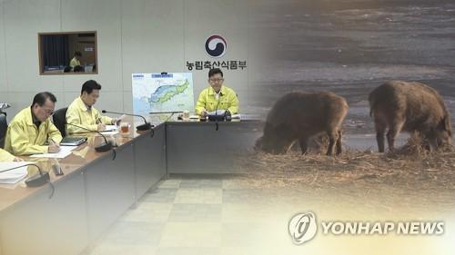 고양 아파트단지 인근 멧돼지 출몰…포획 실패