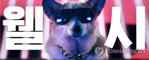 개 vs 고양이 랩 배틀 'LG 퓨리케어 펫' 광고 3백만뷰 넘어