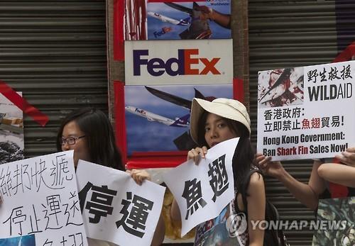 홍콩서 샥스핀 운송 반대 시위