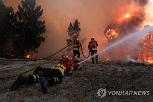 포르투갈의 산불 진압하는 소방대