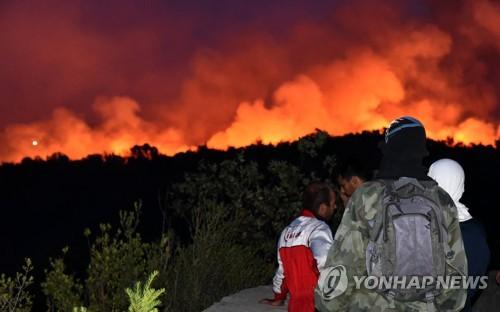 몬테네그로 산불