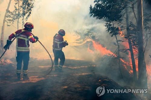 포르투갈 남부 대형 산불 일주일만에 불길 잡혀