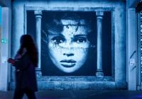 대형마트의 변신…벨기에 거리예술 전시회