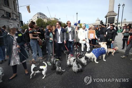 'WOOFERENDUM'행진에 참여한 반려견