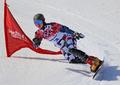 Sochi 2014: men's snowboard parallel slalom