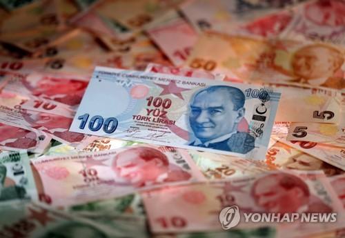 터키리라화 지폐