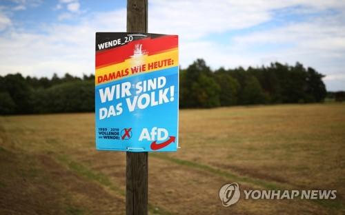 獨 극우당 AfD, 옛 동독 2개州 선거서 1위 차지하나