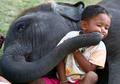 (EPA) 아기 코끼리의 키스/