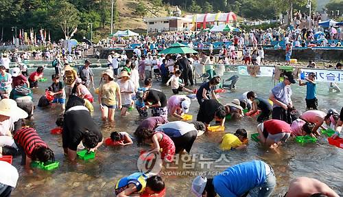 철원 다슬기축제 [연합뉴스 자료사진]