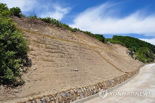 북부산림청, 민북지역 훼손 산림복원으로 생태계 보전