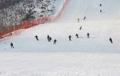 N. Korean skiers