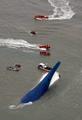 Sunken ferry