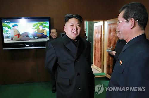 北대표만화 '소년장수', 김정은 바람대로 100부작 완성