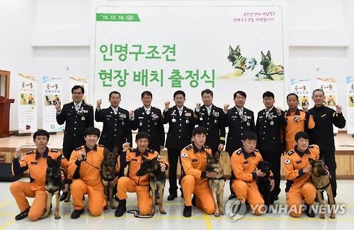 인명 구조견 '마루' 현장 배치 출정식 [연합뉴스 자료사진]