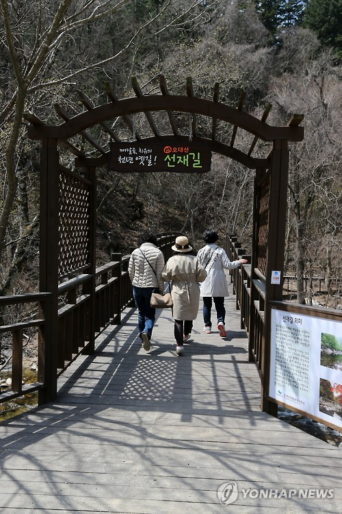 오대산 선재길 입구 [연합뉴스 자료사진]