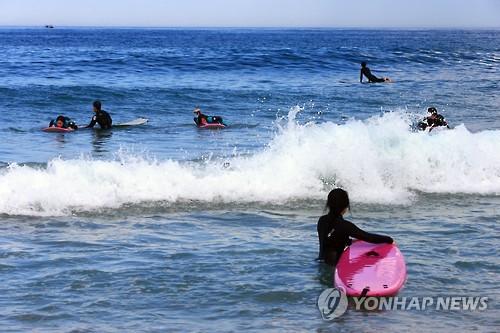 고성 송지호 해변 찾은 서퍼들