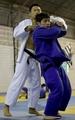 韩国国家柔道队赛前训练