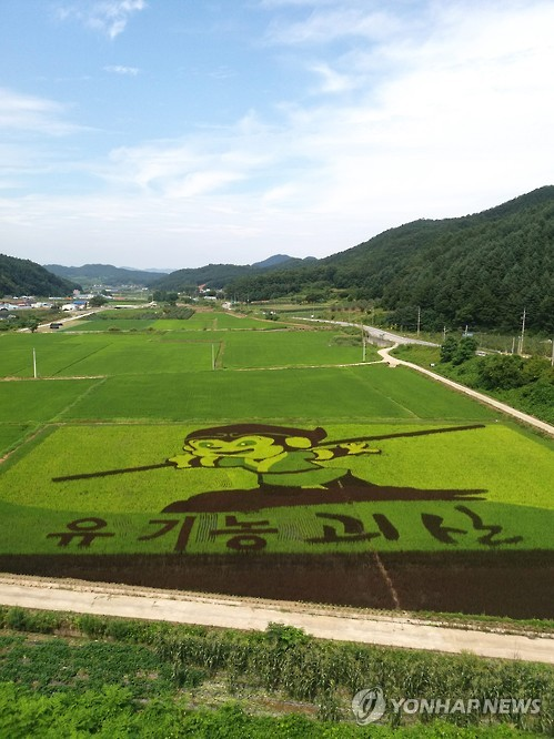Rice paddy art in S. Korea