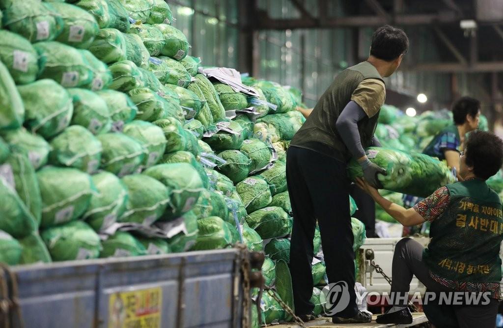 배춧값 폭등…'金배추' 옮기는 상인들 [연합뉴스 자료사진]