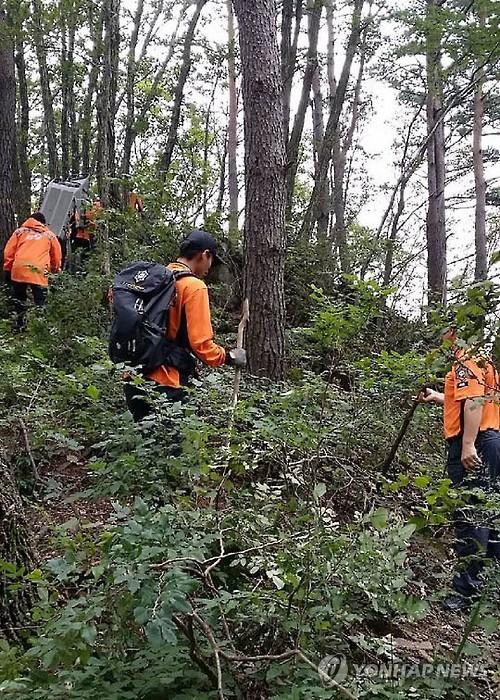 강릉서 버섯 따러 갔다 실종된 80대 숨진 채 발견