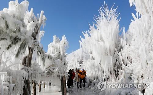 """인제 빙어축제 D-5…""""이번엔 원조 겨울축제"""""""