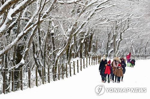 '제주 산간은 눈 세상'[연합뉴스 자료사진]