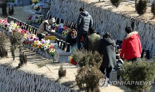 설 성묘 [연합뉴스 자료사진]