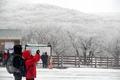 汉拿山上大雪飞扬