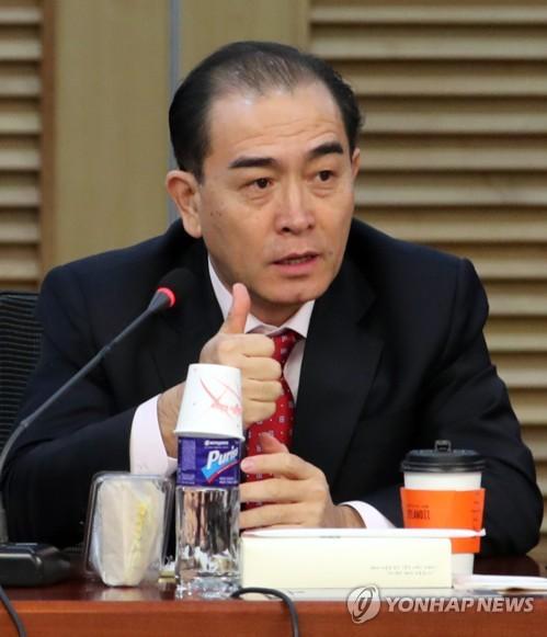 태영호, 국회 안보간담회 참석
