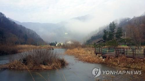 [#꿀잼여행] 강원권: 비밀스런 소양..