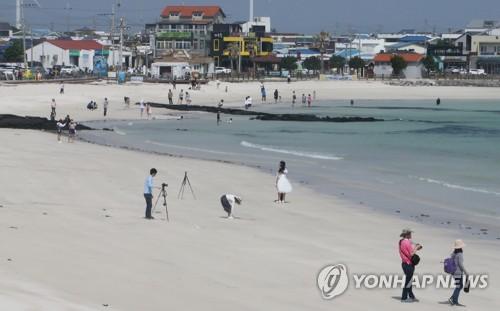 '전국 최대' 제주 해안 모래언덕, 무분별한 개발로 '소멸 위기'