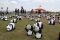 熊猫娃娃现身韩朝边境