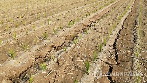 전국 가뭄 확산 비상