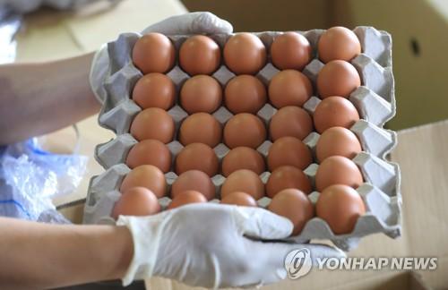 태국산 계란 검역 샘플 도착