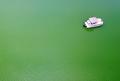 緑色の貯水池