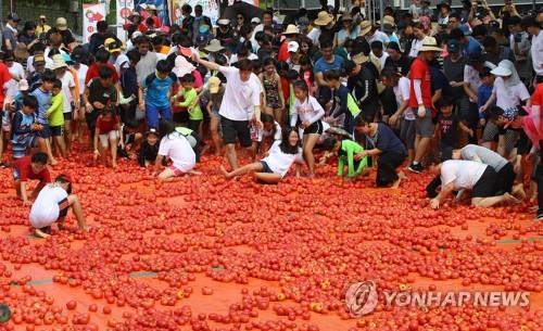 화천 토마토축제 즐기는 관광객 [연합뉴스 자료사진]