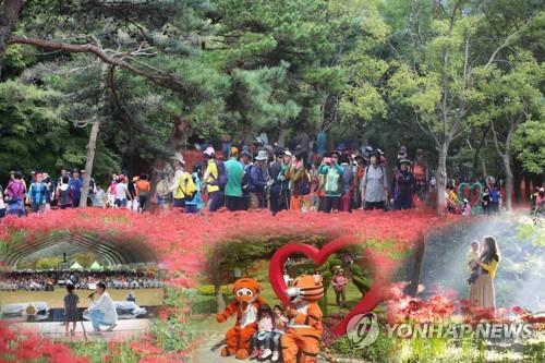 가을 정취 만끽하고 먹거리 즐기고…주말 전국 축제 물결