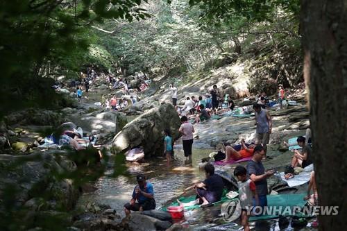 계룡산계곡 피서객 [연합뉴스 자료사진]