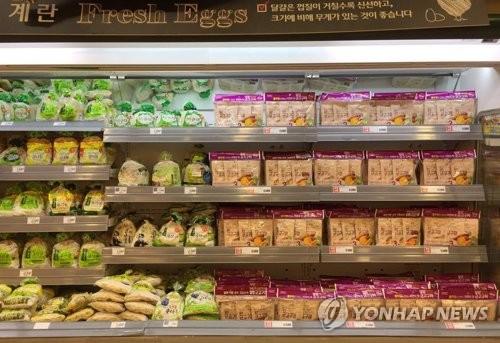 냉장고에 있는 계란 어떻게 해야하나…살충제 계란 Q&A