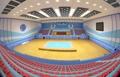 Pyongyang taekwondo gym