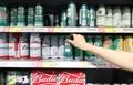 啤酒居酒类进口额排名第一