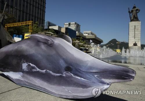 고래고기 1천700㎏ 항공 택배로 밀수한 일당 징역형 집행유예