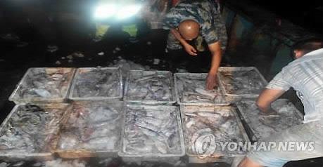 중국 '오징어 싹쓸이' 어획에 세계 각국 '골머리'