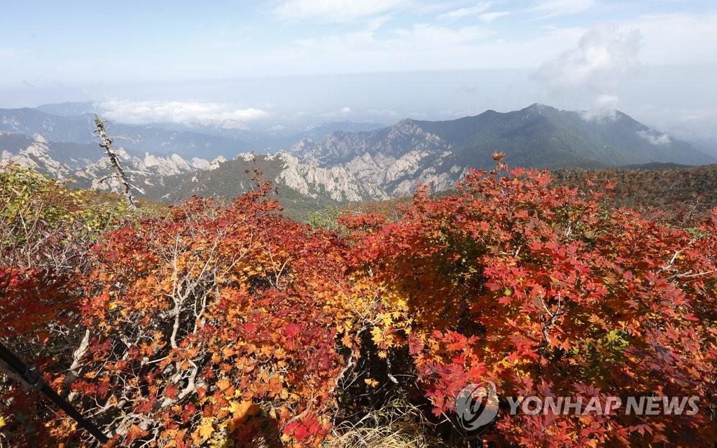 가을옷 갈아입는 설악산