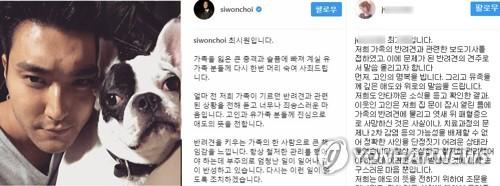 """""""개가 사람들 물어 교육받는다""""…최시원 여동생 SNS 글 논란(종합)"""
