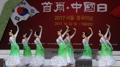 湖南省艺术团访韩参加中国日活动