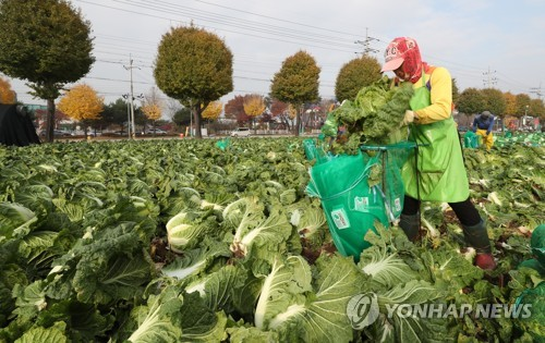 농촌 일손 거드는 외국인 근로자 [연합뉴스 자료사진]