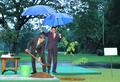 韩印尼总统雨中种树