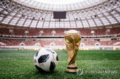 월드컵 공인구 텔스타 18과 우승 트로피