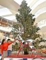 大型水晶圣诞树亮相